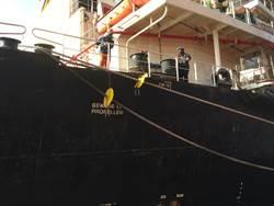 台中港防堵鼠疫非洲豬瘟 船舶需掛防鼠盾拒收廚餘