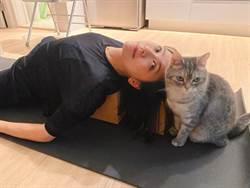 賈靜雯曬軟Q瑜珈照 不科學姿勢粉絲敲碗教學