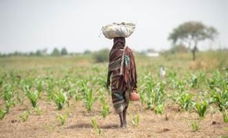 減免債務呼聲高 非洲最大債主大陸怎辦
