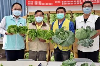 嘉市獲贈500公斤蔬菜 社區、老人食堂加菜