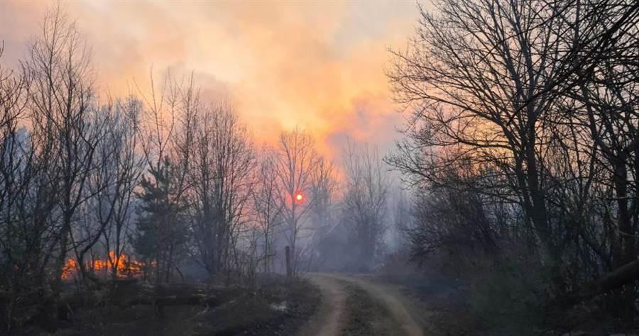 烏克蘭車諾比核電廠附近禁區發生嚴重森林大火。(圖/美聯社)