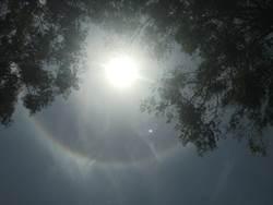 台南天空現日暈 大人小孩不低頭了統統抬頭看