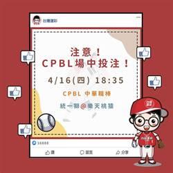 台灣運彩預計首開中華職棒例行賽場中投注
