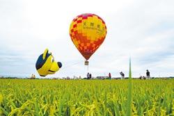 防疫 冬山停辦熱氣球嘉年華