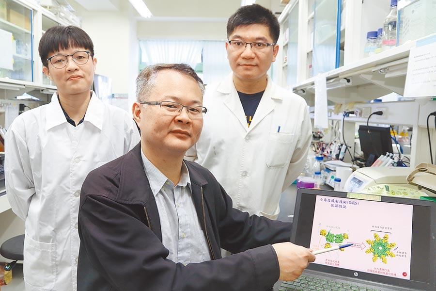 新冠病毒肆虐,全球疫情嚴峻,中興大學教授侯明宏(前排)研究團隊,發現「5-benzyloxygramine(P3)」藥物可抑制病毒。(陳淑芬攝)