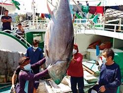 台日漁業協商不可停