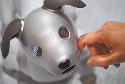 AI機械寵物 搶食陪伴商機