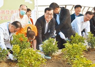 立體綠化2.0 打造空中花園