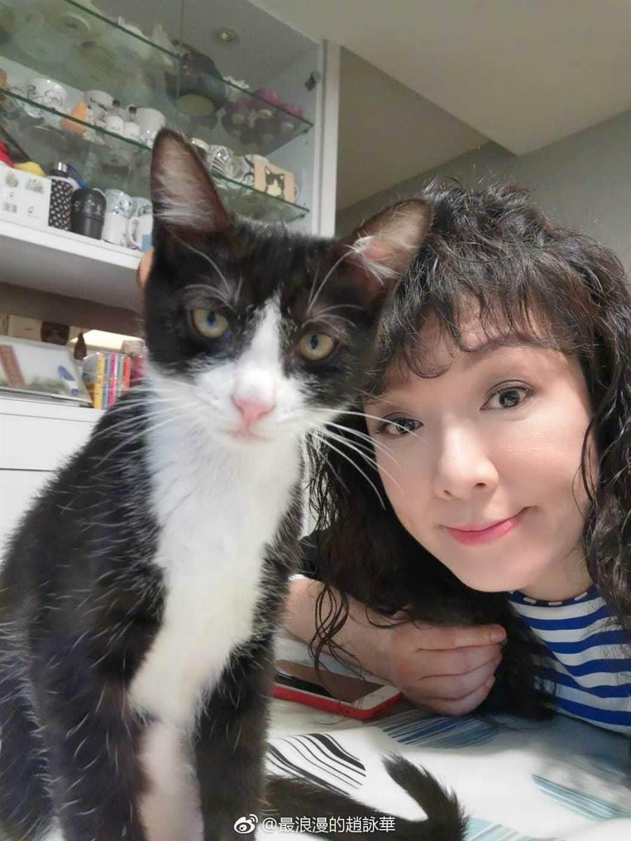 趙詠華非常疼愛貓咪。(翻攝趙詠華微博)