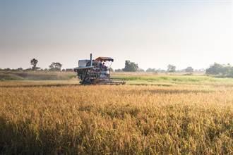 陸農業農村部:農業科技貢獻率達到59.2%