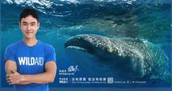 阮經天海底調情鯨鯊 呼籲保護生態