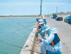 轉推小型農漁業 殺出疫條活路