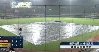 中職》桃猿挑戰7連勝紀錄 比賽因雨中斷