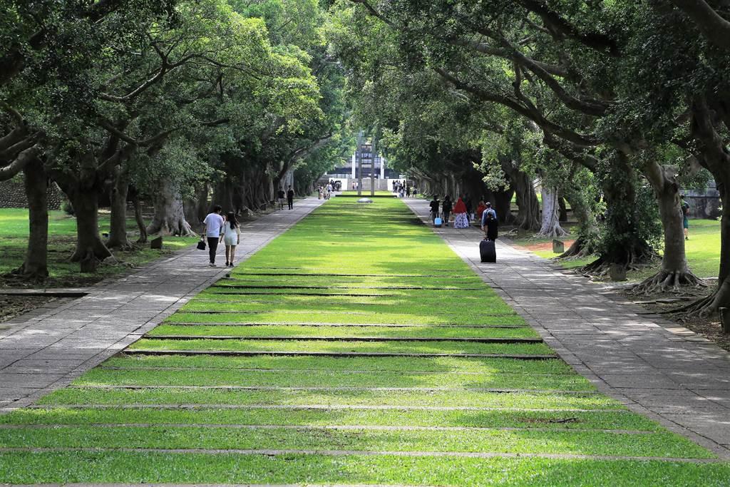 東海大學校園綠意盎然,校方長期注重環境永續,受到國際肯定。(東海提供/林欣儀台中傳真)