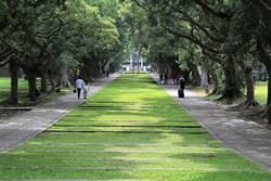 全球影響力大學排名 東海大學居全台私校第一