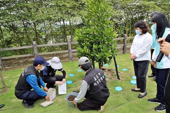 嘉義市立殯葬館環保樹葬區啟用,市長黃敏惠(右二)視察樹葬的模擬流程。(廖素慧攝)
