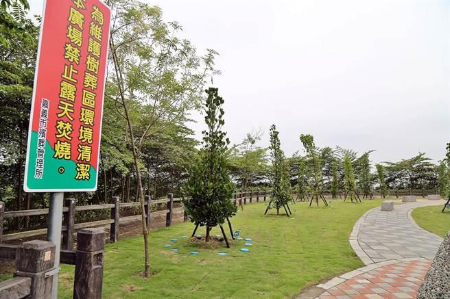 嘉義市立殯葬館環保樹葬區提供一百六十八個葬位。(廖素慧攝)