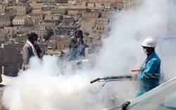 葉門南方勢力宣布自治 政府批將招來「災難後果」