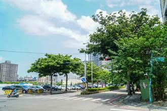 縣府新建嘉豐國小 打造竹縣首座鑽石級綠建築校園