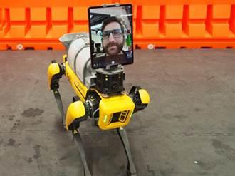 波士頓動力Spot機器狗 作醫生助手治療新冠患者