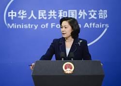 華春瑩點名蓬佩奧:停止政治把戲 省點精力救人