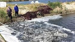 漁民紓困補助上路 涵蓋對象引正反意見