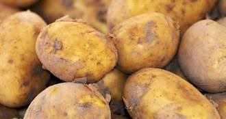 救救馬鈴薯 比利時呼籲居民每周吃2次炸薯條