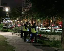 自閉兒公園遭毆受傷 市議員促死角應裝監視器
