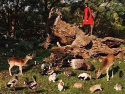 Gucci示範了何為與大自然和平共處