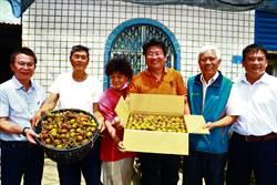 全台最早玉荷包正式上市 恆春果農裝箱北上拍賣場搶好價