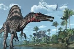 超級掠食者棘龍 是巨大的游泳恐龍