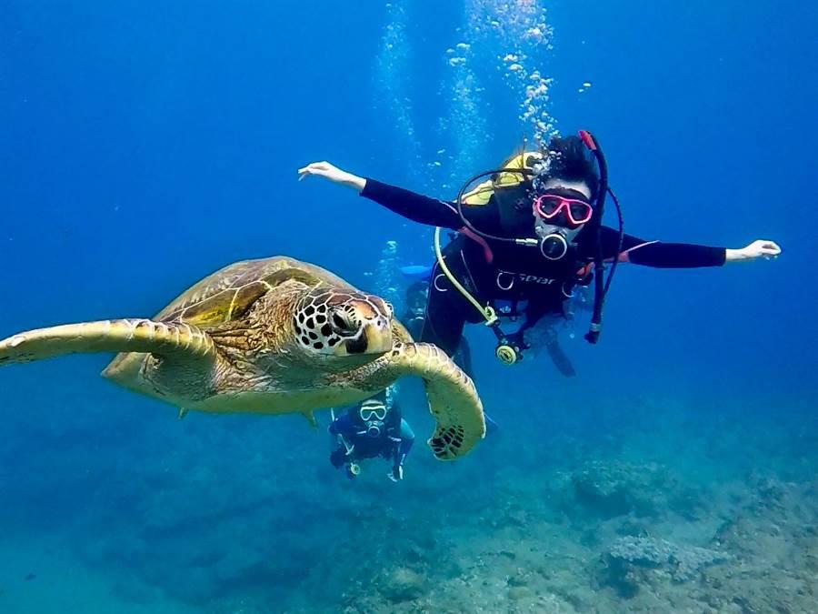 「彈性工作八小時」讓李惠娟安排時間考取潛水證照,投入美麗海洋的懷抱。