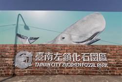 海洋無疫 左鎮化石園區古生物僅「鯨魚」享特權免戴罩