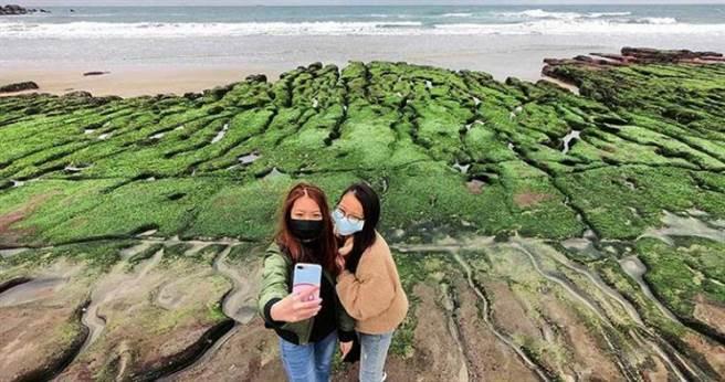 排列參差、縱向入海的石槽,宛如童話中的綠色祕境。(圖/于魯光攝,下同)