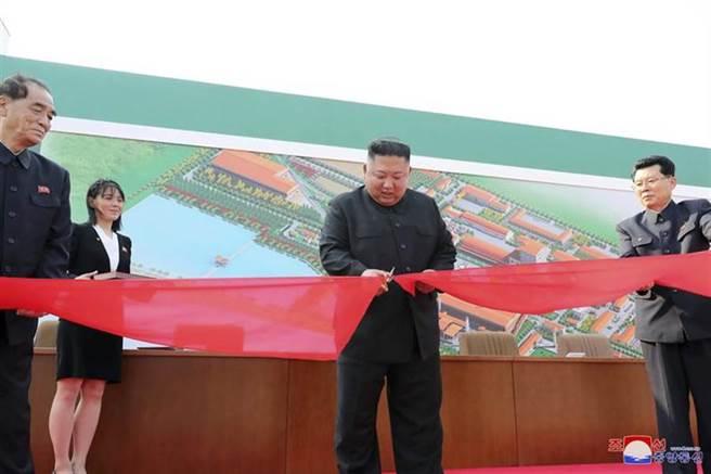 金正恩(中)5月1日勞動節當天出席順天磷肥廠竣工儀式,並當場剪綵,身旁為胞妹金與正(左二),卻不見過去總是隨行的北韓「二把手」、國務委員會第一副委員長崔龍海身影。(圖/美聯社)