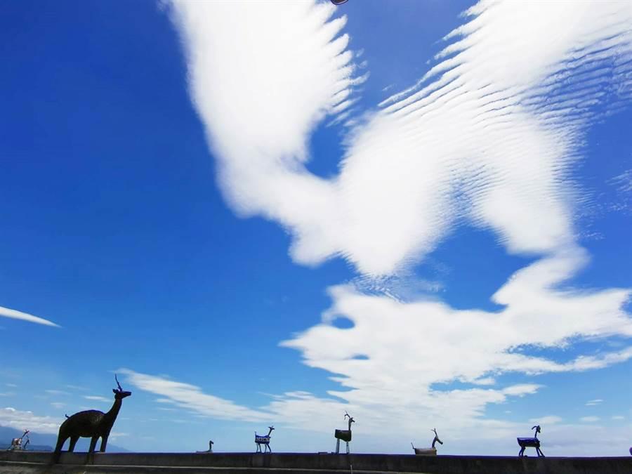 台東市禾風度假酒店執行長的林杰昇在比西里岸拍到奇怪的雲。(林杰昇提供/莊哲權台東傳真)