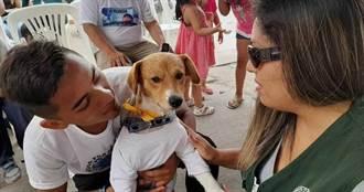 男孩衝火場救愛犬「全身70%燒傷不治」!狗狗「神情哀傷」參加喪禮