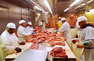 373人全部無症狀!美肉品加工廠爆大規模群聚感染