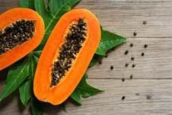 營養滿分的「萬壽果」別錯過台農2號木瓜