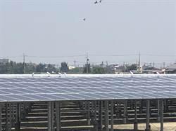 國內首波綠電轉供交易出爐    台積電、正崴5家買逾億度太陽能