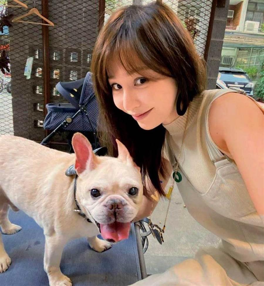 愛犬布魯托今年1月過世,當時單身的王心凌一度情緒崩潰。(圖/翻攝自王心凌臉書)