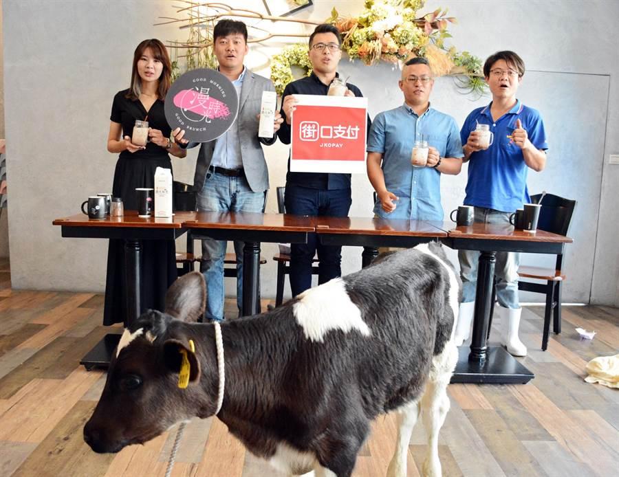 屏東早午餐業者攜手小農異業合作,更找來乳牛站台,希望一起度過這波疫情。(林和生攝)