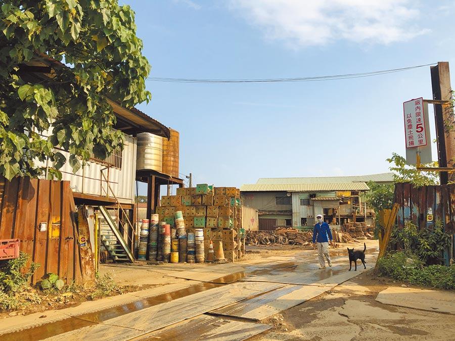 新北市動保處上月啟動專案,解決五股垃圾山廠家拆遷後犬貓遺留問題。(戴上容攝)