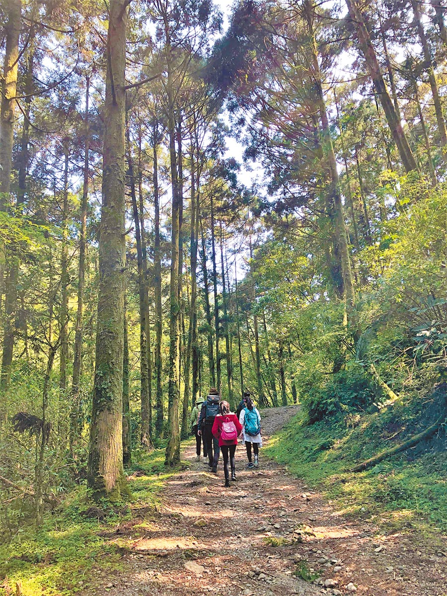 淡蘭古道已成為許多登山者必訪步道之一,南路預計年底修建完工。(新北觀旅局提供/葉德正新北傳真)