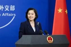 陸外交部:台灣企圖加入世衛組織是謀「獨」政治操弄