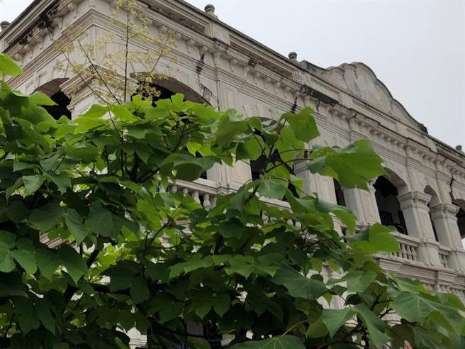 綠葉掩映下的百年洋樓裡,有許多大時代的故事值得追尋。(李金生攝)