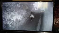 老翁躺自挖坑身亡 救難隊擲筊半小時後找到人