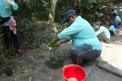 林務局「環島守護保安林」 打造社區生態後花園