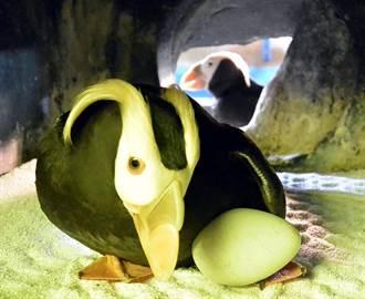 母親節快樂!屏東海生館推線上海洋媽咪育兒經