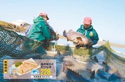 全聯引進永安石斑魚